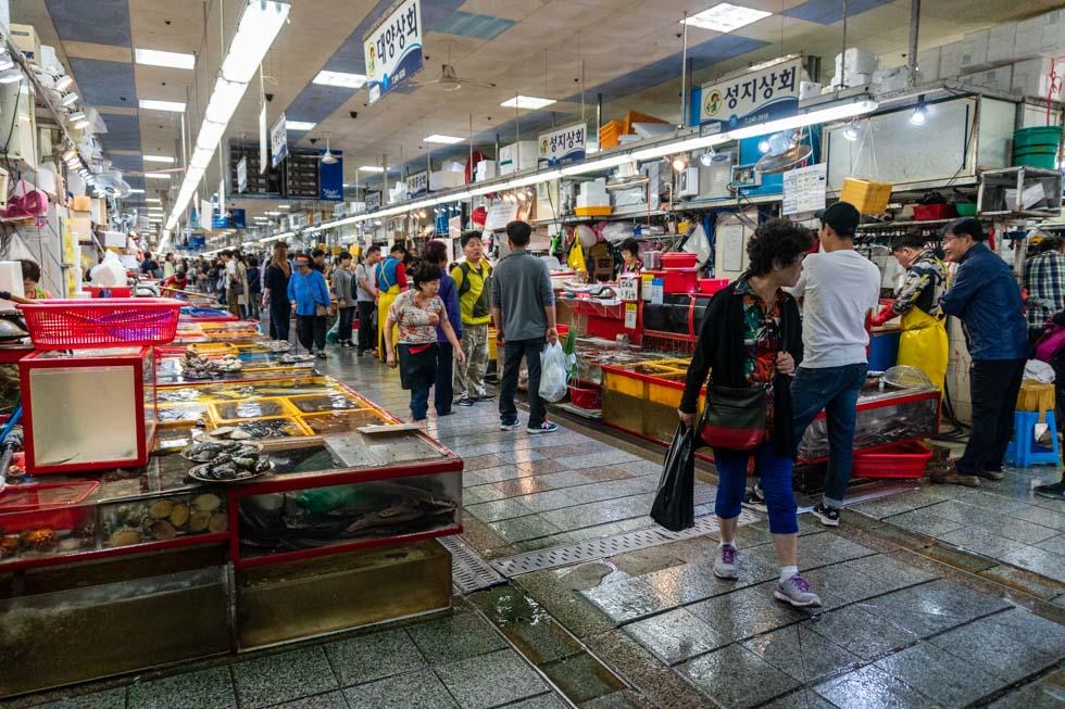 Busan - Jagalchi Seafood Market