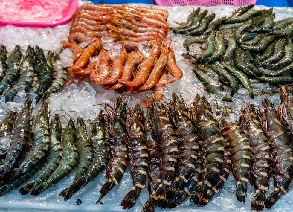 Busan - Jagalchi Seafood Market - fresh prawns