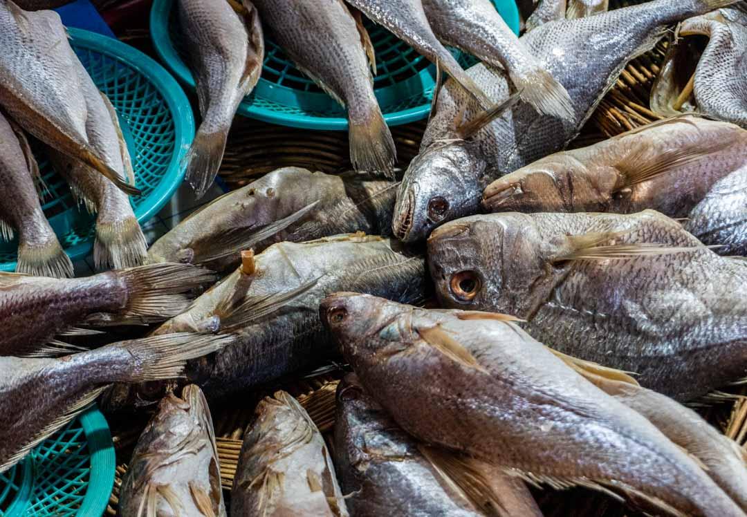 Busan - Haeundae Beach Night Market - Fresh Fish